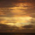 Golden Sunrise Squared by Teresa Mucha