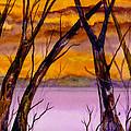 Golden Sunset by Brenda Owen