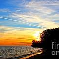 Golden Sunset by Davandra Cribbie