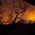 Golden Sunset by Sarah Lamoureux