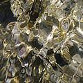 Golden Treasure Just Below by Becky Arvin