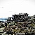 Goldfield Colorado by Christina Perry