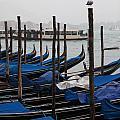 Gondola  by Kenneth Drylie