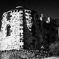 Gothic Tower Of The City Observatory Edinburgh Scotland Uk United Kingdom by Joe Fox