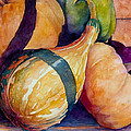 Gourds In The Fall by Sherri Snyder