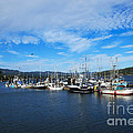 Government Wharf In Sooke Harbour by Louise Heusinkveld
