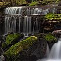 Gracefully Flowing by Mike Reid