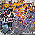 Graffiti Skull by Susan Leggett