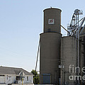 Grain Processing Facility In Shirley Illinois 3 by Alan Look