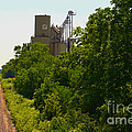 Grain Processing Facility In Shirley Illinois 5 by Alan Look