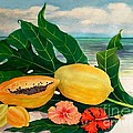 Grand Anse Still Life by Janet Summers-Tembeli