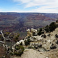 Grand Canyon 2 by Tanya  Searcy