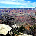Grand Canyon 4 by Tanya  Searcy