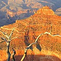 Grand Canyon 40 by Will Borden