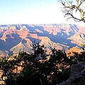 Grand Canyon 61 by Will Borden