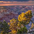 Grand Canyon At Sunset by Randall Nyhof