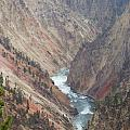 Grand Canyon At Yellowstone by Wendy Hope