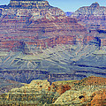 Grand Canyon Landscape II by Julie Niemela