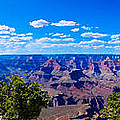 Grand Canyon Panorama White by David Waldo