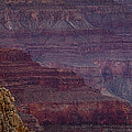 Grand Canyon Ridges by Andrew Soundarajan
