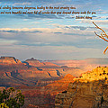 Grand Canyon Splendor - With Quote by Heidi Smith