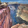 Grand Canyon Toroweap Vista by Bob Christopher