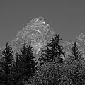 Grand Teton Bw by Michael MacGregor