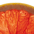 Grapefruit Macro 2 by John Brueske