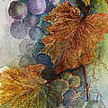 Grapes Iv by Judy Dodds