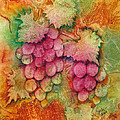 Grapes With Rust Background by Carla Parris