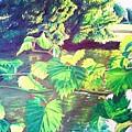Grapevines Toledo Botanical Gardens by Samuel McMullen