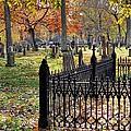 Gravestones by Janice Drew