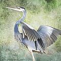 Great Blue Heron by Francesa Miller