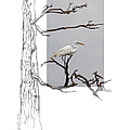 Great Egret - Gnarled Tree by Andrew McInnes