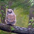Great Horned Owlette by Dee Carpenter