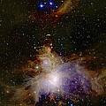 Great Orion Nebula by 2mass Projectnasa