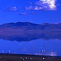 Great Salt Lake From Causeway by Rich Walter