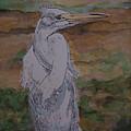 Great White Egret by Cheryl Lynn Looker
