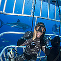 Great White Shark Behind Frightened by Todd Winner