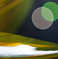 Green And Gold Abstract by Dana Kern