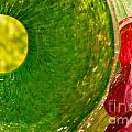 Green And Red by Artist and Photographer Laura Wrede