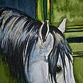 Green Barn by Susan Herber