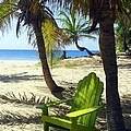 Green Chair On The Beach by Carla Parris