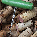 Green Corkscrew by Garry Gay