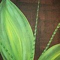 Green Foliage by Katie Slaby