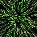 Green Garden Abstract by Charles Garrett