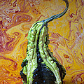 Green Gourd by Garry Gay