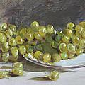Green Grapes  by Ylli Haruni