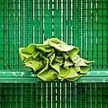 Green Greens by Lauri Novak