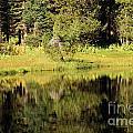 Green In Summit Lake by Adam Jewell
